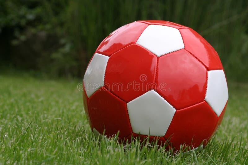 Rote Fußballkugel stockfotos