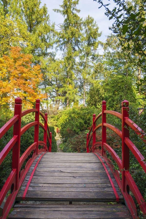 Rote Fußgängerbrücke im botanischen Garten von Klausenburg, Rumänien lizenzfreie stockfotografie