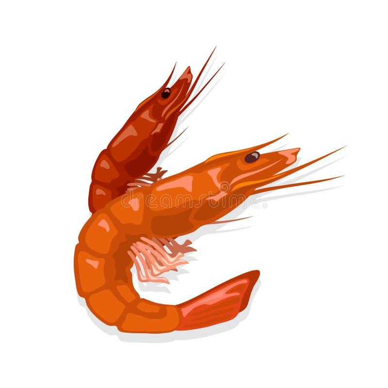 Rote Garnelen, gedünstet oder gekocht Gebackener Garnelen Meeresfrüchte für Feinschmecker stock abbildung