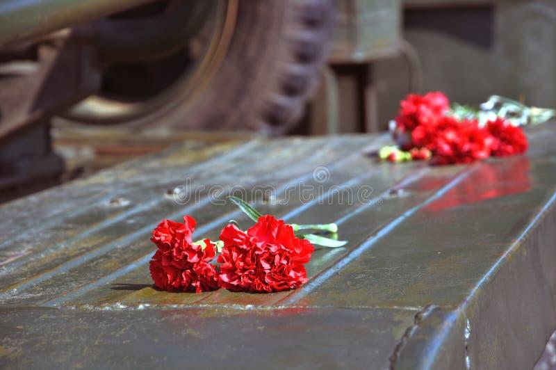 Rote Gartennelken Knospen Auf Einer Grnen Metallischen Oberflche Stockfoto   Bild von rote ...