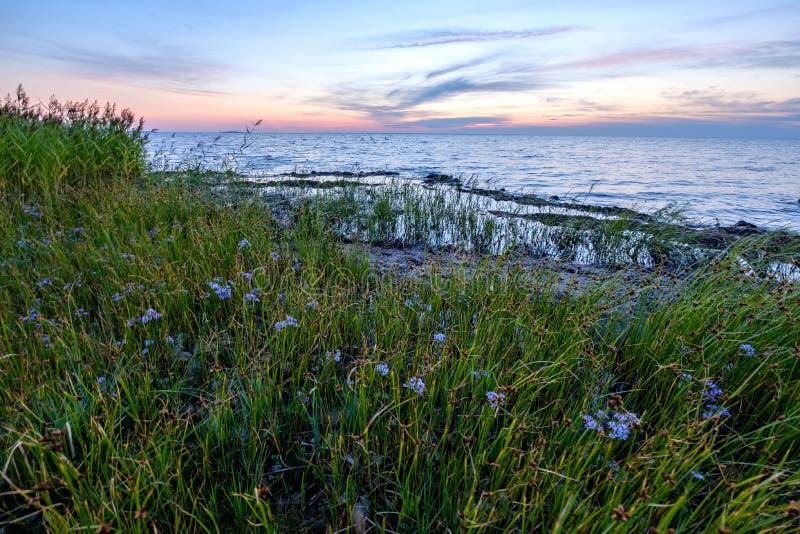 Rote gesättigte Farben im Sonnenuntergang über der Ostsee mit ruhigen Wasser- und Sonnenreflexionen in Estland stockfoto