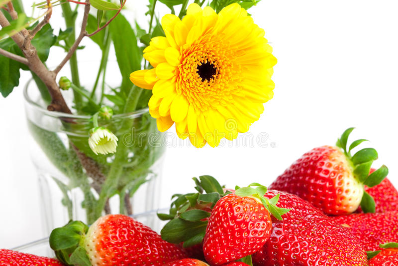 rote große saftige reife Erdbeeren und Blume stockbilder