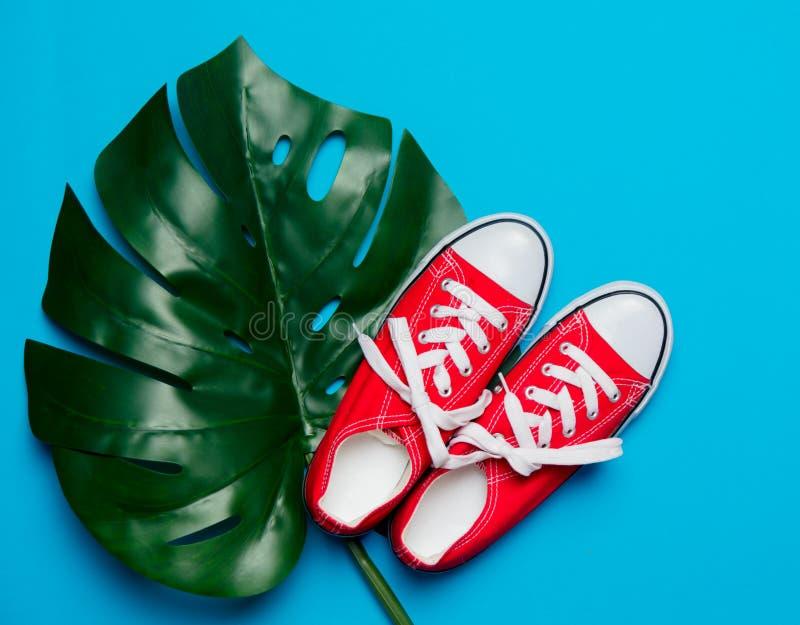 Rote Gummiüberschuhe und grünes Palmblatt stockfoto