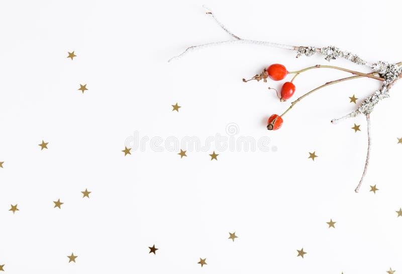 Rote Hagebuttenbeeren auf einem weißen Hintergrund und goldenen Sternen Weihnachten, neues Jahr, Winterkonzept Flache Lage, Drauf stockfoto