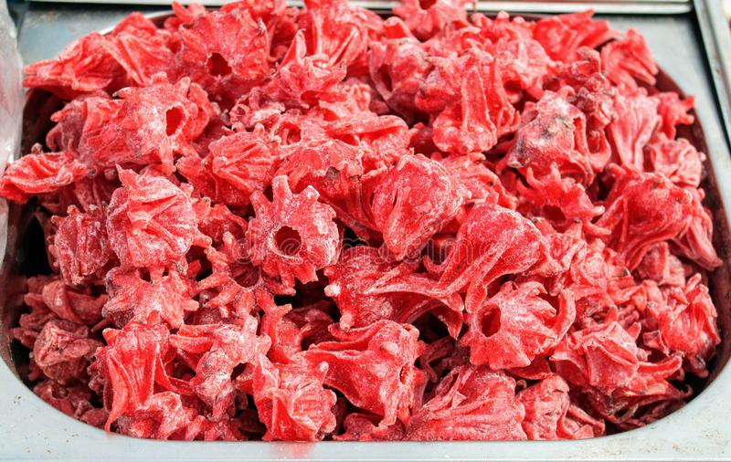 Rote Hibiscusblume entw?sserte lizenzfreie stockfotografie