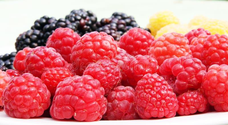 Rote Himbeeren der frischen Früchte und andere Beeren stockfotos
