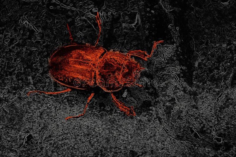 Rote Käfer Abstraktion stockfotos
