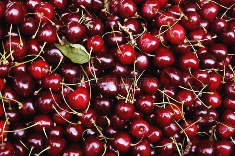 Rote Kirschen lizenzfreies stockfoto