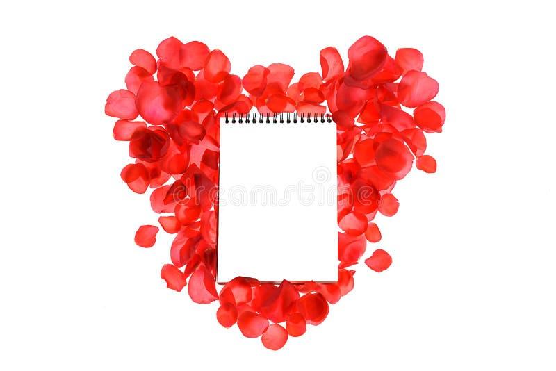 Rote korallenrote Rosenblumenblätter auf Herzform und Notizbuch lokalisiert auf weißem Hintergrund stockfotografie
