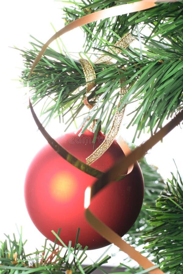 Rote Kugel, die vom Weihnachtsbaum hängt lizenzfreie stockfotografie