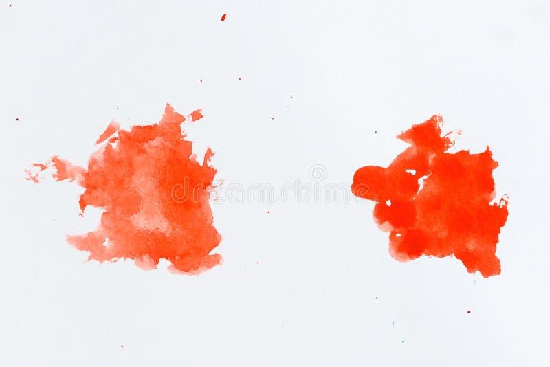 Rote Lack Splatters Malen Sie spritzt auf weißem Hintergrund waterco stockfotos