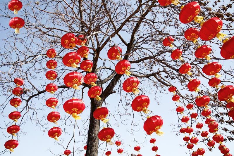 Rote Laternen im neuen Jahr stockfoto