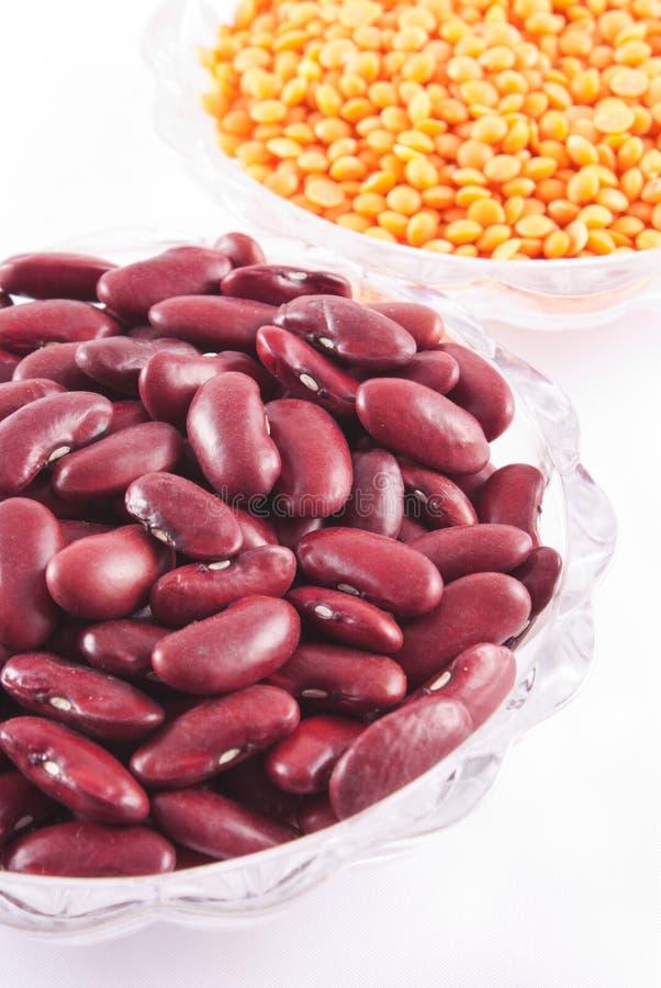 Rote Linsen und Bohnen stockfoto