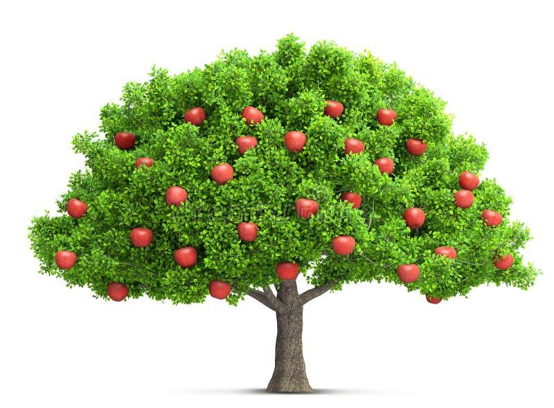 Rote lokalisierte Illustration 3D des Apfelbaums lizenzfreie abbildung