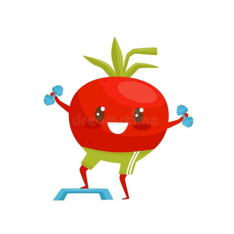 Rote lustige Tomate, die mit Dummköpfen, sportive Gemüsezeichentrickfilm-figur tut Eignungsübungsvektor trainiert lizenzfreie abbildung