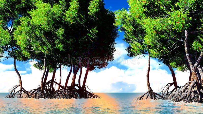 Rote Mangroven lizenzfreie abbildung