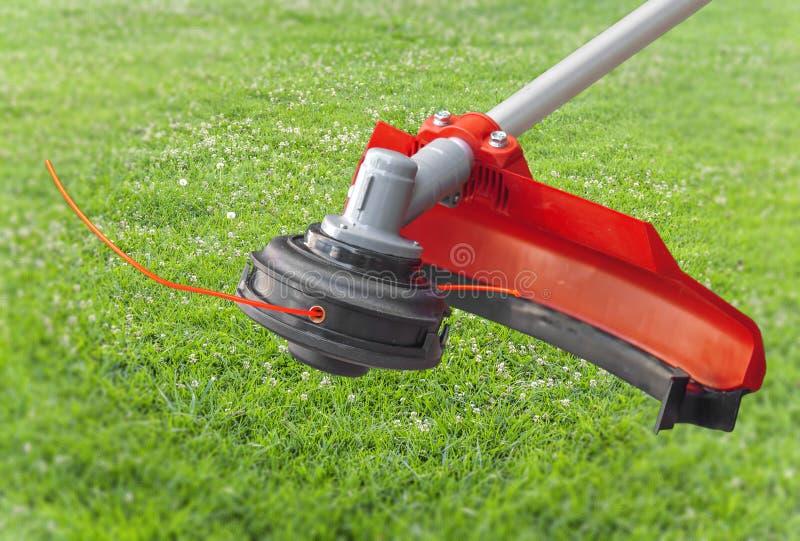 Rote Maschine des Rasenmähergroßkopf-Trimmers auf grünem Gras im Garten stockbilder