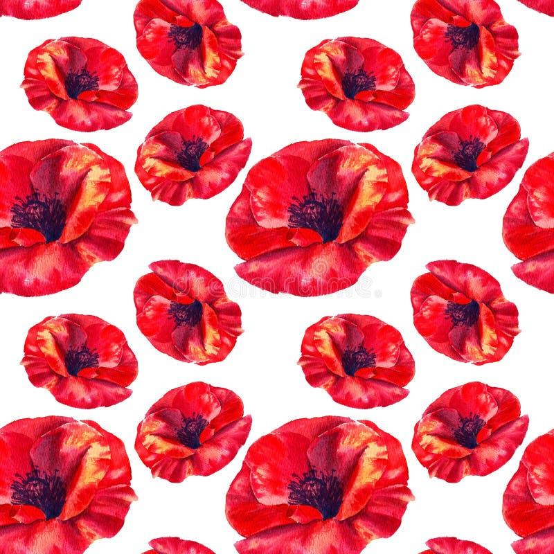 Rote Mohnblumen auf einem wei?en Hintergrund Nahtloses mit Blumenmuster mit gro?en hellen Blumen Sommer Watercolourillustration f stock abbildung
