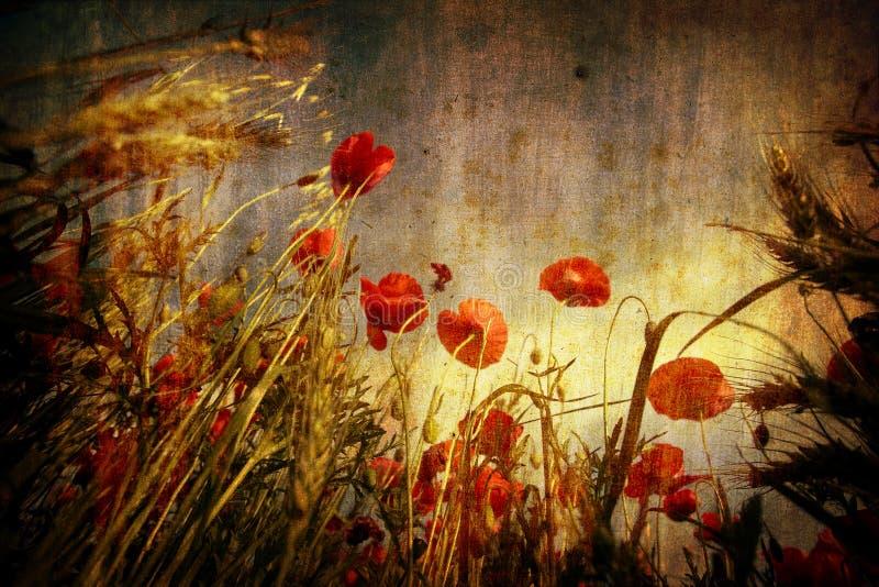 Rote Mohnblumen im grunge Hintergrund vektor abbildung