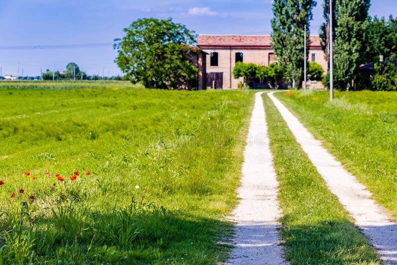 Rote Mohnblumen und Bauernhaus lizenzfreie stockbilder