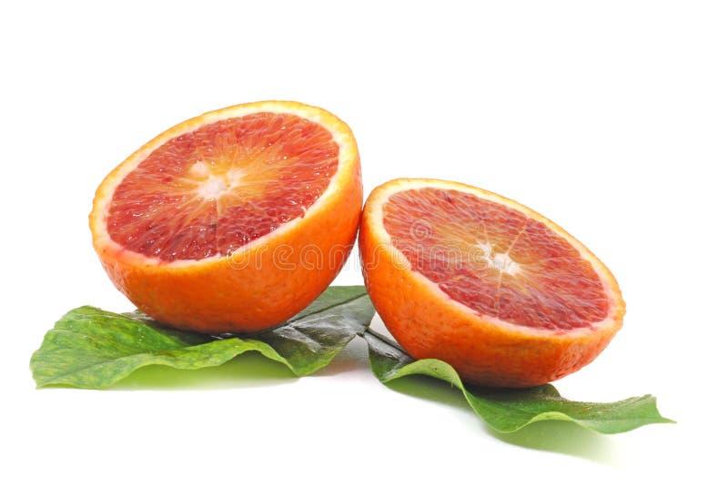 Rote Orange stockbilder