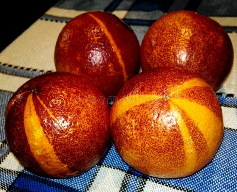 Rote Orange oder Sanguina stockbild