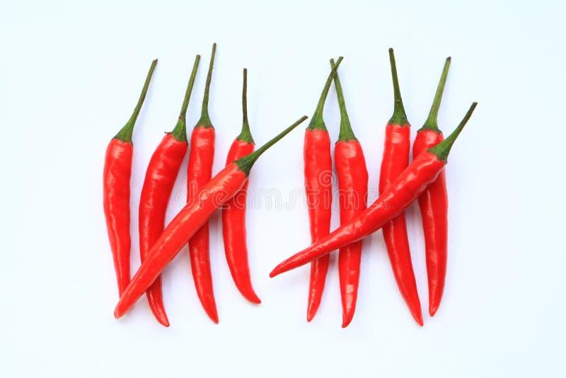 Rote Paprika-Zählung lizenzfreie stockfotografie