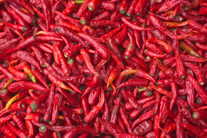 Download Rote Paprikas stockbild. Bild von pikant, heiß, peeper, gewürz - 37627