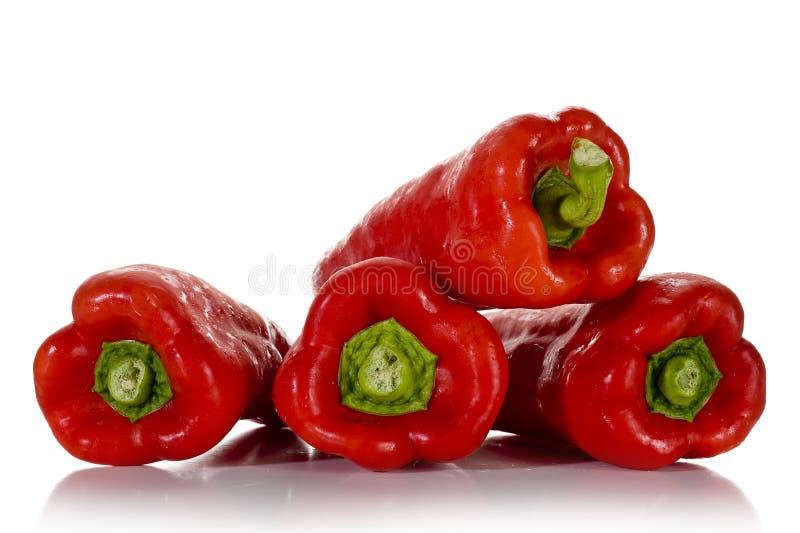 Rote Pfeffer lizenzfreie stockfotos