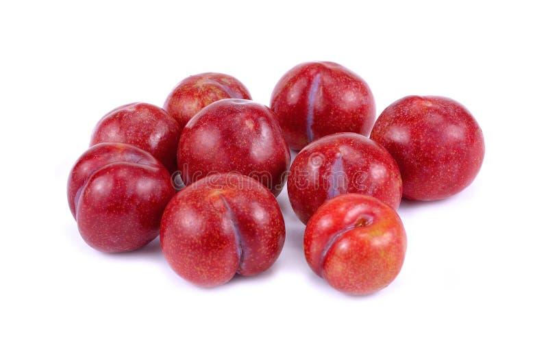 Rote Pflaumenfrucht lokalisiert auf weißem Hintergrund stockbilder