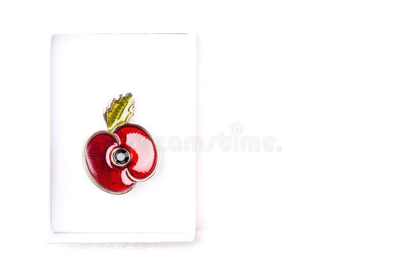 Rote Poppy Pin als Symbol des Erinnerungs-Tages lizenzfreie stockfotografie