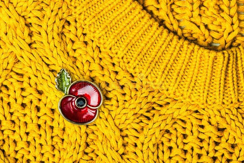 Rote Poppy Pin als Symbol des Erinnerungs-Tages lizenzfreie stockfotos