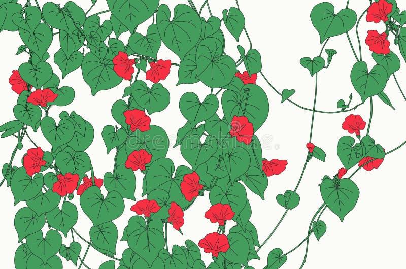 Rote Rebblüten mit grünen Blättern lizenzfreie abbildung