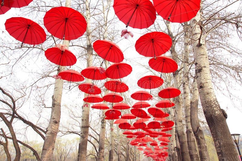 Rote Regenschirme stockfotografie