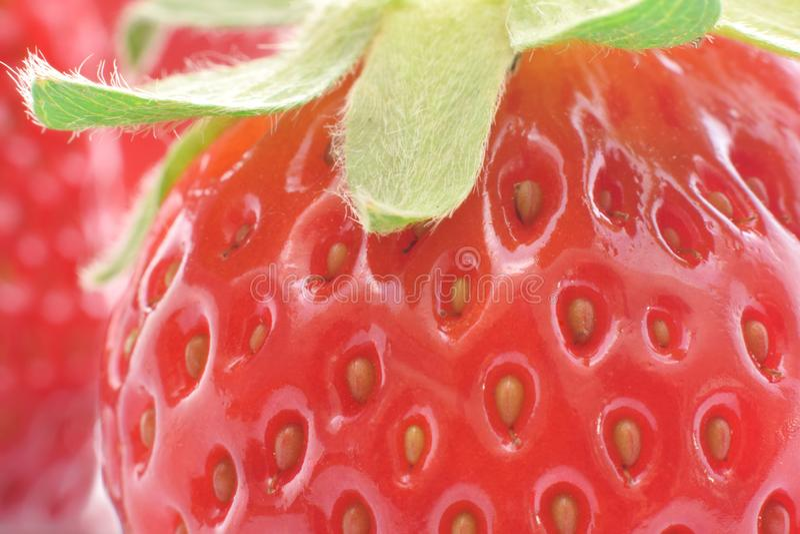 Rote reife Erdbeere extrem geschlossen stockbild