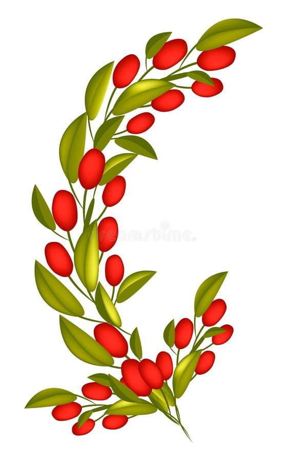 Rote reife Oliven auf einer Niederlassung auf weißem Hintergrund vektor abbildung