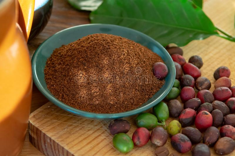 Rote reife und getrocknete organische ArabicaKaffeebohnen, frischer gemahlener Kaffee, Biokaffeebauernhof stockfoto