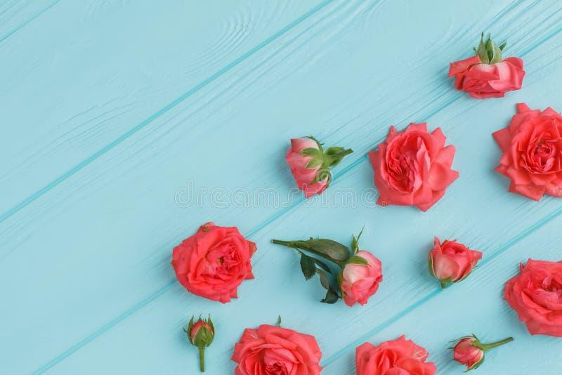 Rote rosafarbene Blume zerstreut auf Purpleheart stockbild
