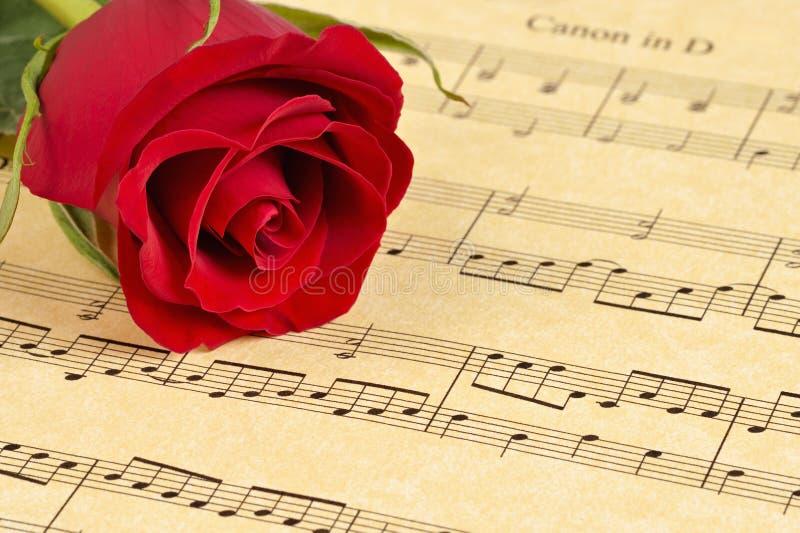 Rote Rose auf Blatt-Musik lizenzfreie stockfotos