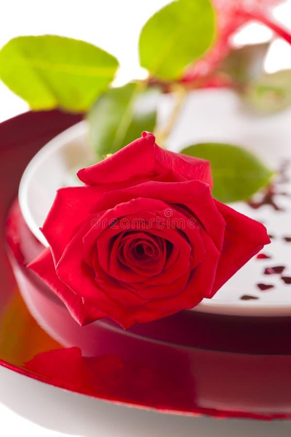 Rote Rose auf der Platte - 8. März - der Tag der Frauen stockbild