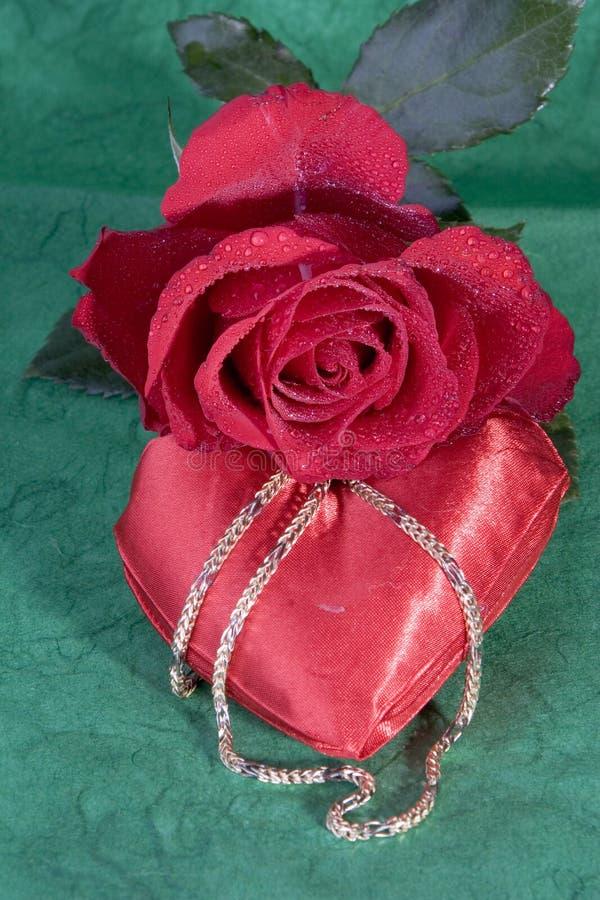 Rote Rose auf Grün lizenzfreie stockfotografie