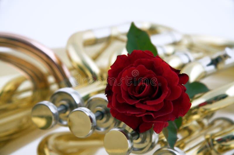 Rote Rose auf Tuba oder Euphonium stockfoto