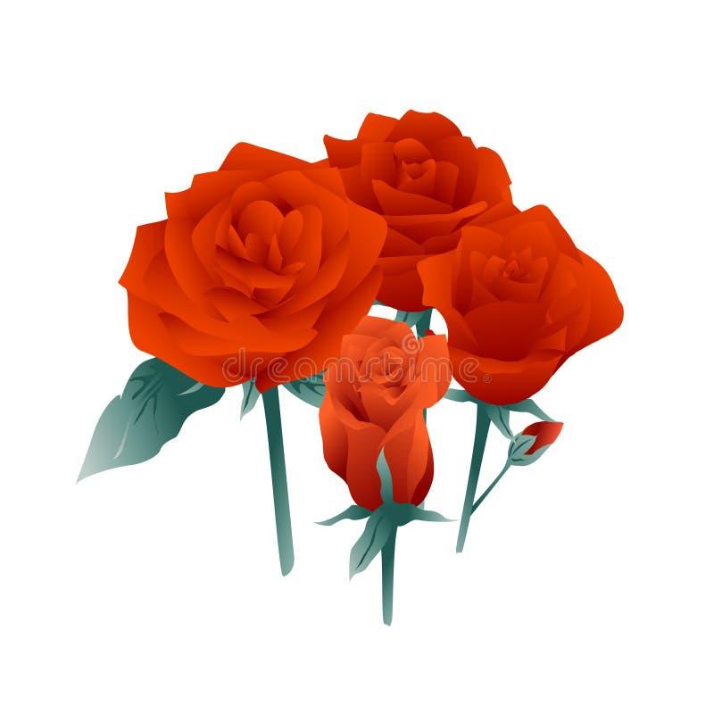 Rote Rose Flowers lizenzfreie abbildung
