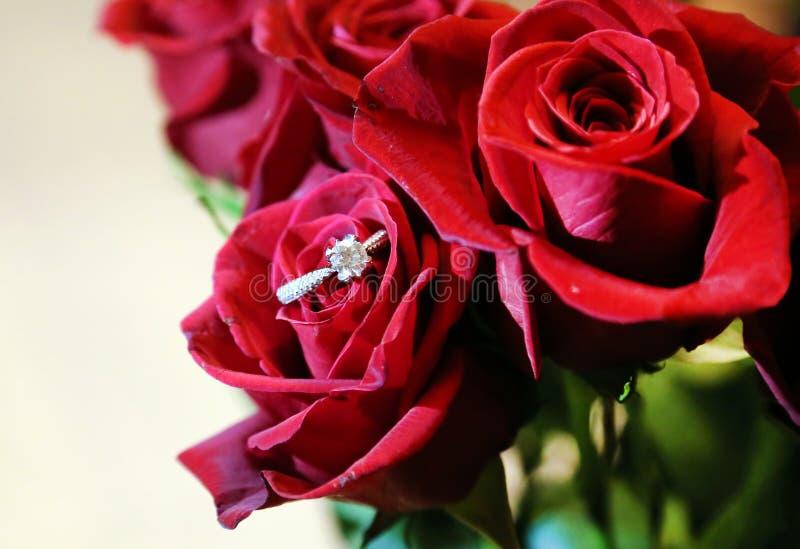 Rote Rose mit Diamond Engagement Ring stockbilder