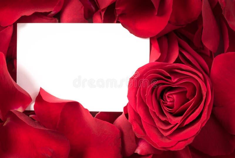 Rote Rose Petals mit Karten-Herzen lizenzfreie stockfotos