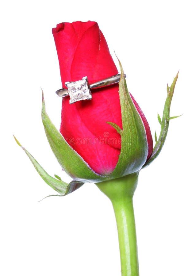 Rote Rose und Ring stockbilder