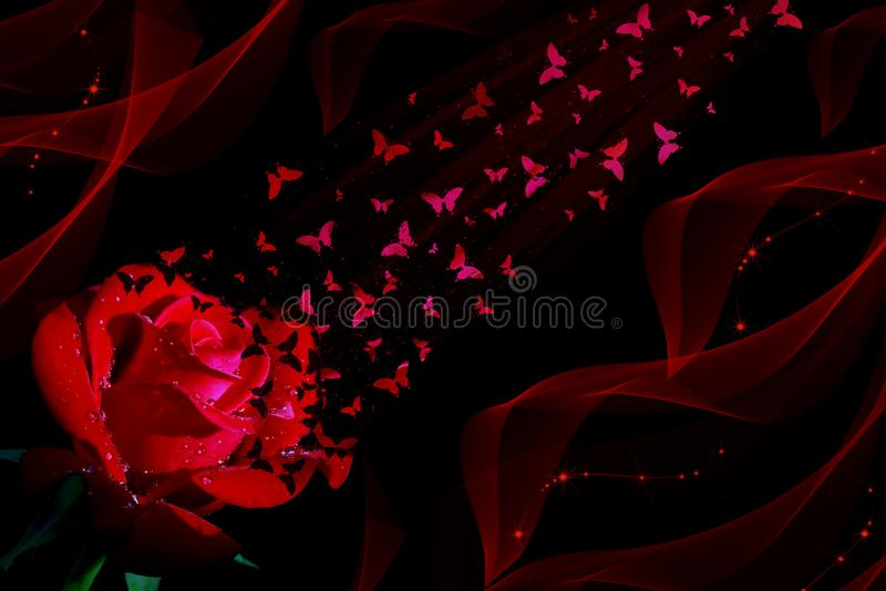 Rote Rose und Schmetterlinge auf schwarzem Hintergrund lizenzfreie abbildung