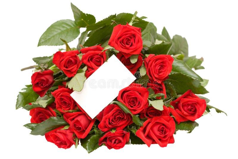 Rote Rosen lizenzfreie stockfotos