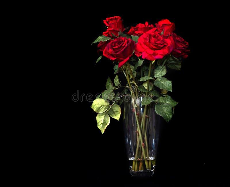 Rote Rosen auf Blackbackground stockbilder