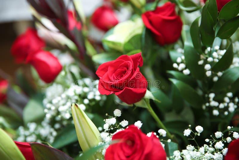 Rote Rosen auf dem Boden Geburtstag Große Rosenbukett lizenzfreie stockfotos